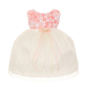 Kids Dream Baby Girls Coral 3D Chiffon Flowers Mesh Special Occasion Dress 6-24M