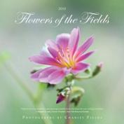 2018 Flowers of the Fields
