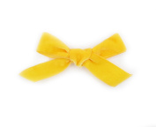 PrettyBoutique 10cm Girls Vintage Hand Tied Velvet Hair Bow Alligator Clip