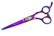Elite Classic Model ERP Professional Hair Cutting Scissors / Shears