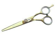 Elite Classic Model EGD Professional Hair Cutting Scissors / Shears