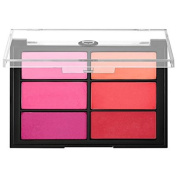 Viseart Blush Palette Rose/Coral 25ml/24 g