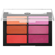 Viseart Blush Palette Orange/Violet 25ml/ 24 g