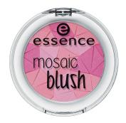 essence Mosaic Blush, 40 The Berry Connexion