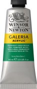 Winsor and Newton Galeria Acrylic Colour 60ml 484 Permanent Green Middle