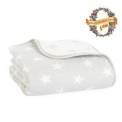 aden + anais premium flannel dream blanket, fate