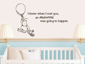 Quote Wall Decal Vinyl Sticker Decals Quotes Winnie the Pooh Quote I knew when I met you an Adventure was Going to Happen Nursery Decor Baby Room Wall Decal ZX207 (n)