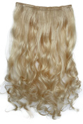 PRETTYSHOP 60cm 5 Clips one piece Full Head Clip In Hair Extensions Hairpiece Curled Wavy Heat-Resisting Different Colours C56-1