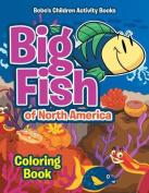 Big Fish of North America Coloring Book