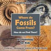 Where Do Fossils Come From? How Do We Find Them? Archaeology for Kids - Children's Biological Science of Fossils Books