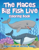 The Places Big Fish Live Coloring Book