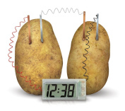 Vivo © Potato Powered Digital Clock - Scientific Educational Kids Fun Novelty Toy Game