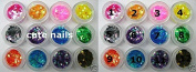 1 can Sequin Panel - 6 SIDED - Colour Mix - Cute Nails