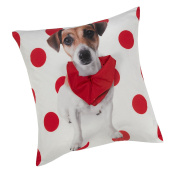 Jack Russell Multi Light Weight Cushion Cover With A Red Scarf Effect Attached 17inx17in (43cmx43cm) Approximately By Hamilton McBride