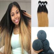 Real 100% virgin human hair extension 1b/27 omber colour straight 3 bundles hair weaving