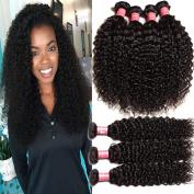 KLAIYI Brazilian Curly Hair 3 Bundles 12 14 41cm 6A Grade Virgin Human Hair Extensions Natural Colour 95-100g/pc