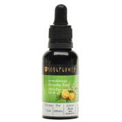 Soulflower Breathe Easy Essential Oil Blend, 30ml, 100% Pure, 100% Vegan, Organic