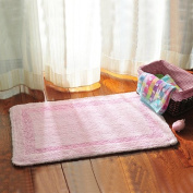 Household mats door mats Watergate bath mat bath mat -4570cm c