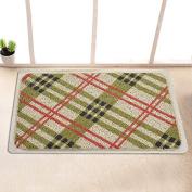 Garden door mat bathroom mat skid-proof mats in the Hall -4060cm y