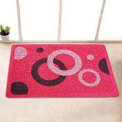 Garden door mat bathroom mat skid-proof mats in the Hall -4060cm w