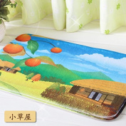 Door mats living room kitchen cushions bedroom Watergate mat bathroom mat in the Foyer -4060cm Small cottage