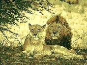 No Frame Lion Couple Animals Diy Painting By Numbers Paint On Canvas Acrylic Colouring Painitng By Numbers For Home Wall Decor