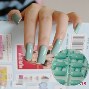 24pcs Flat Curved False Nails Light Green Nail Art Acrylic Tips Press-On Nails Full Wraps Simply DIY 318L