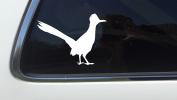 ThatLilCabin - RoadRunner Road Runner Bird Geococcyx AS309 20cm car sticker decal