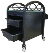 Continuum Infinity Salon & Spa Pedicure Accessory Cart + FREE Cape Co. Apron