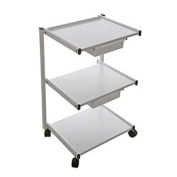 Professional Rolling Metal Trolley/ Cart Heavy Duty with Two Drawer