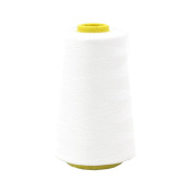 Embroidery Machine Thread Sewing Tools Embroidery Thread Floss Sewing -White