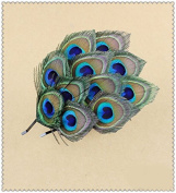 Natural Peacock Feather Fascinator Wedding Hair Clip (blue with brown) by Seven & Nine Service