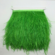 MagiDeal Ostrich Feather Dyed Fringe 1 Yard Trim Sewing Crafts - Onion Green, One Size