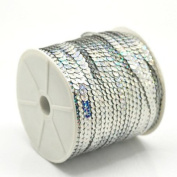 OZXCHIXU(TM) 6mm Sequin Trim Ribbon On A String In Silver