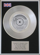 Bay City Rollers - 18cm Platinum Disc - Give A Little Love