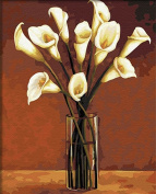 Arts Language Wooden Framed 41cm x 50cm Paint by Numbers Diy Painting Calla