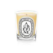 Diptyque Candle Aubépine / Hawthorn 190g