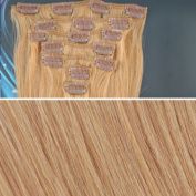 Beauties Factory BF 46cm #14 Natural Ash Blonde (Hair211) Full Head Clip in Straight Remy Human Hair Extension