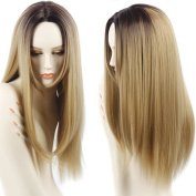 Netgo Blonde Ombre Wigs Long Straight Synthetic Lace Front Wigs Ombre for Women with Free Cap