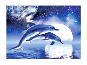 Full diamond round diamond diamond painting blue dolphins,30*25cm