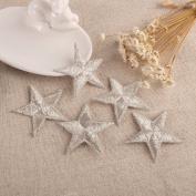 CraftbuddyUS 10 Silver Star Fabric Motifs, Iron On, Sew On Embroidery Patch
