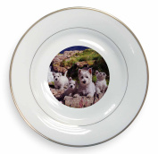 West Highland Terrier Dogs Gold Leaf Rim Plate n Gift Box