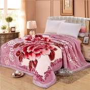 BDUK The Autumn And Winter Raschel Wedding Stereo Stamp Blankets Double-Sided Thick Hair Blankets