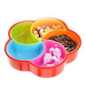 WuKong Creative Multi Sectional Snack Serving Tray Set with Lid, Dried Fruits, Nuts, Candies Dishes