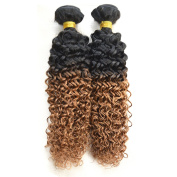 Babe Hair Kinky Curly 2 Bundles of 7A 100g/pc Ombre Remy Hair Extensions Human Hair Brazilian for Black Women, Black to Auburn #1B/30, 210mls Set