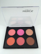 Beauty Product Series-- Wonderful Leading-the-trend 6 Colour Makeup Blush Face Blusher Contour Powder Palette Cosmetic