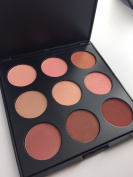 Beauty Product Series-- Wonderful Leading-the-trend 9 Colour Makeup Blush Face Blusher Contour Powder Palette Cosmetic