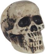 Loftus Foam Skull Halloween Table 18cm Decoration Prop, Grey