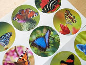 Minilabel Large Circular Butterfly Stickers, Round Selfstick Labels For Cards, Envelopes, Craft And Decoration