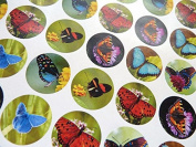 Minilabel Small Circular Butterfly Stickers, Round Selfstick Labels For Cards, Envelopes, Craft And Decoration